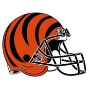 cincinnati-bengals-helmet-logo-3-primary